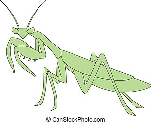 mantis illustration - Creative design of mantis illustration