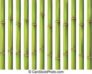 set of bamboo background