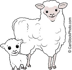 sheep mother and baby