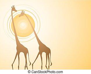 sunset giraffes illustration