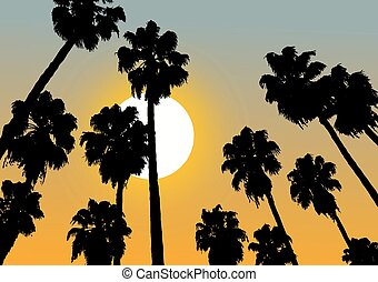 sunset palm - Creative design of sunset palm