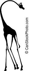 tall giraffe illustration - Creative design of tall giraffe...