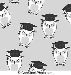 teacher owl seamless draw