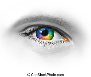 Creative eye as a multicolored macro of a human eyeball showing creativity and artistic fashion expression through visionary design perspective on a white background.