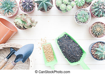 Creative flat lay gardening desk with Cactus plants in pot and garden tools