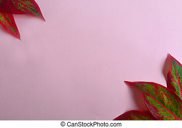 Creative lay out of red leaf on pastel background. Minimal concept with copy space.