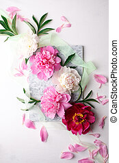 Creative layout made with pink and white peonies flowers on bright background. Flat lay. Spring Seasonal valentine, woman, mother, 8 march holiday