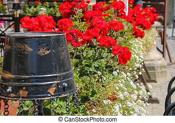 Creative street design of cafe terrace with blooming geranium and old metal bucket in the city center