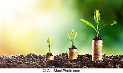 crecer, dinero, -, gráfico, en, subida