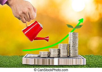 crecer, el verter, planta, lata, dinero