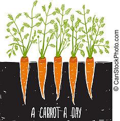crecer, letras, zanahorias, dibujo, scratchy