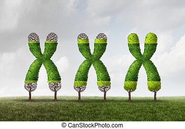 crecimiento, telomere