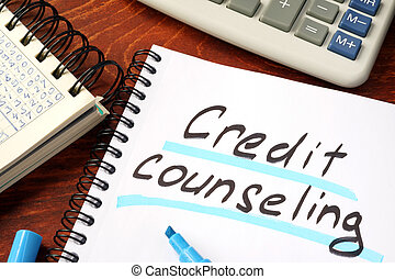 Credit Counseling Stoneburner Landing IN