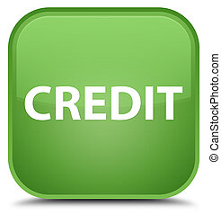 Credit special soft green square button