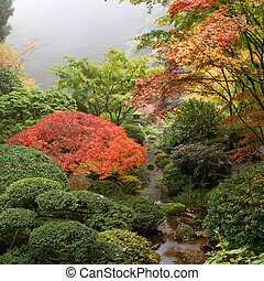 Creek at Japanese Garden in the Fall