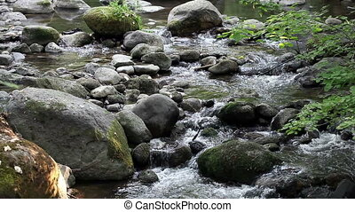 Creek Flowing Towards Camera