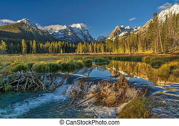 Creek has been damed by beavers in Idaho