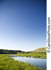 Creek Hills - Creek hill in beautiful Saskatchewan nature