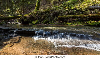 creek in the canyon H?rschbach