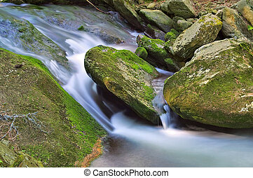 creek in the Giant Mountains in Bohemia