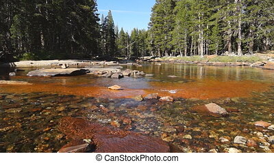Creek in Yosemite - CA, USA