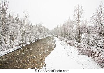 Creek Landscape in Winter