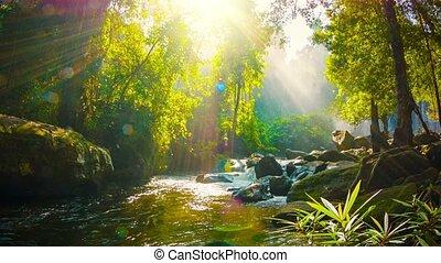 Creek near waterfall in Phnom Kulen National Park. Cambodia,...