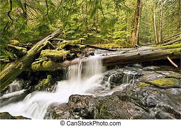 creek pantera, quedas