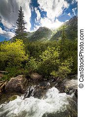 Creek under Hills
