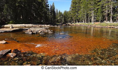 Creek - Yosemite, CA, USA
