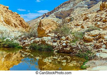 Creek Zin flows through the canyon Ein Avdat in the Negev...