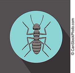 Creepy Black Ant