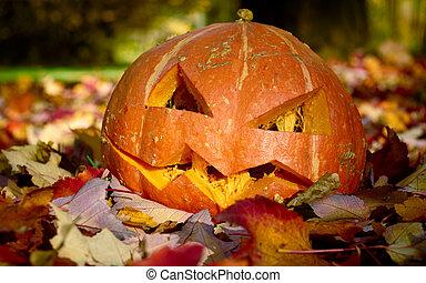 Creepy carved pumpkin. Closeup shot in autumn park.