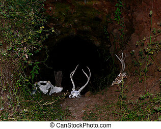 A dark and forboding cave entrance with animal bones strewn about.
