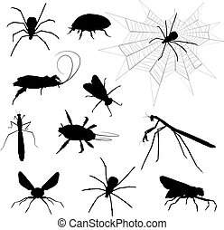 Creepy crawlies  - Silhouettes of lots of various insects