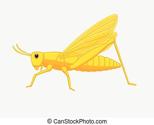 Grasshopper - Creepy Grasshopper Insect Vector Illustration