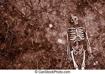 Creepy halloween skeleton