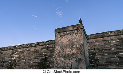 Creepy scene of a bird standing guard on a ancient looking wall.