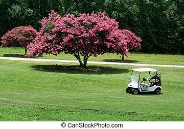 Golf cart next to crepe myrtle