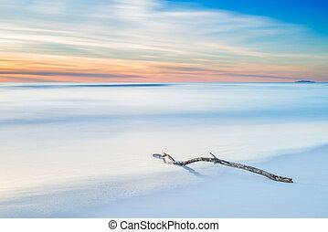 crepuscolo, legno, tramonto, ramo, spiaggia bianca