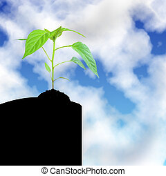 crescendo, céu, planta
