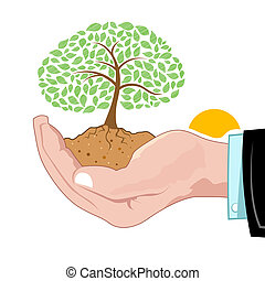 crescendo, natural, árvore, mão