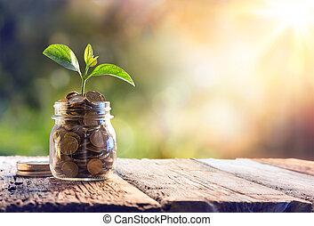 crescendo, planta, moedas, poupança