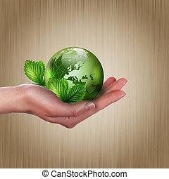 crescendo, terra, planta, verde