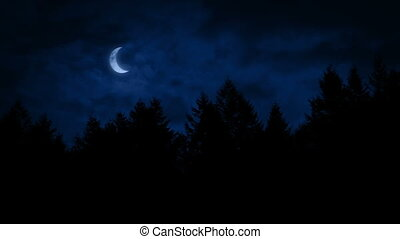 Crescent Moon Above The Forest - Crescent moon above forest...