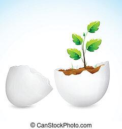 crescente, alberello, conchiglia, uovo