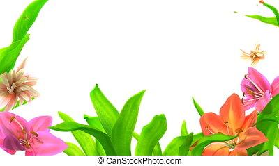 crescente, astratto, fiori, cornice