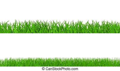 crescente, erba, con, canale alfa