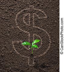 crescente, soldi, concetto, finanziario