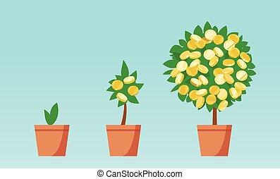 crescente, soldi, monete, albero